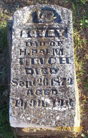 LINCH, LOVEY - Washington County, Arkansas | LOVEY LINCH - Arkansas Gravestone Photos