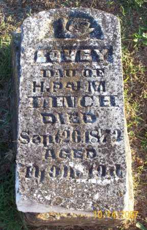 LINCH, LOVEY - Washington County, Arkansas | LOVEY LINCH - Arkansas Gravestone Photos