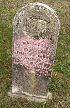 MALLICOAT, DEDMOND - Washington County, Arkansas | DEDMOND MALLICOAT - Arkansas Gravestone Photos
