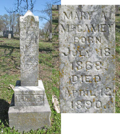 "MCCAMEY, MARY A ""MOLLIE"" - Washington County, Arkansas 
