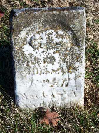 MILL_, LE?A - Washington County, Arkansas | LE?A MILL_ - Arkansas Gravestone Photos