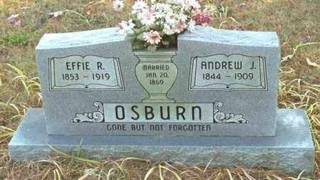 OSBURN, EFFIE R - Washington County, Arkansas | EFFIE R OSBURN - Arkansas Gravestone Photos