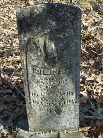 PARKS, BIRD E. - Washington County, Arkansas | BIRD E. PARKS - Arkansas Gravestone Photos