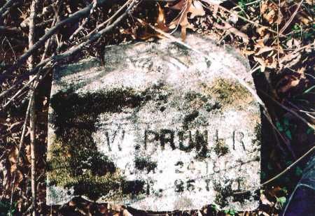 PRUNER, ?. W. - Washington County, Arkansas | ?. W. PRUNER - Arkansas Gravestone Photos