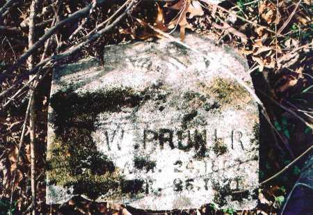 PRUNER, ?. W. - Washington County, Arkansas | ?. W. PRUNER - Arkansas Gravestone Photos