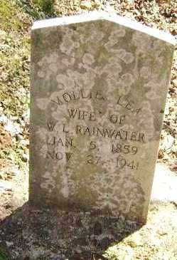 LEA RAINWATER, MOLLIE - Washington County, Arkansas | MOLLIE LEA RAINWATER - Arkansas Gravestone Photos