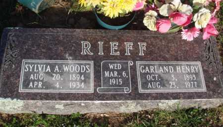 RIEFF, SYLVIA A. - Washington County, Arkansas | SYLVIA A. RIEFF - Arkansas Gravestone Photos