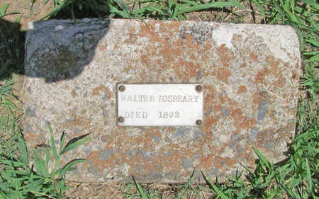 ROSBEARY, WALTER - Washington County, Arkansas | WALTER ROSBEARY - Arkansas Gravestone Photos