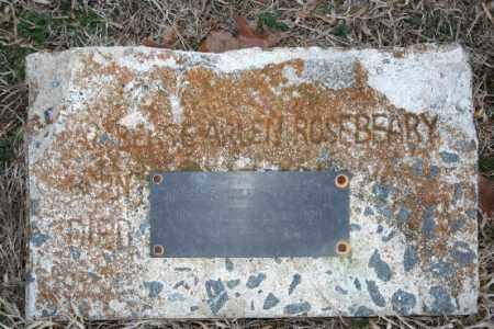 ROSEBEARY, AMBERSE ARLEN - Washington County, Arkansas   AMBERSE ARLEN ROSEBEARY - Arkansas Gravestone Photos