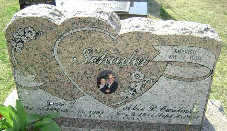 SCHADER, ALICE L. - Washington County, Arkansas | ALICE L. SCHADER - Arkansas Gravestone Photos