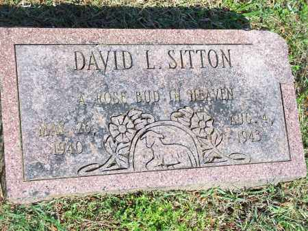 SITTON, DAVID L. - Washington County, Arkansas | DAVID L. SITTON - Arkansas Gravestone Photos