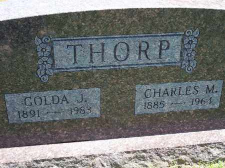 THORP, CHARLES M. - Washington County, Arkansas | CHARLES M. THORP - Arkansas Gravestone Photos