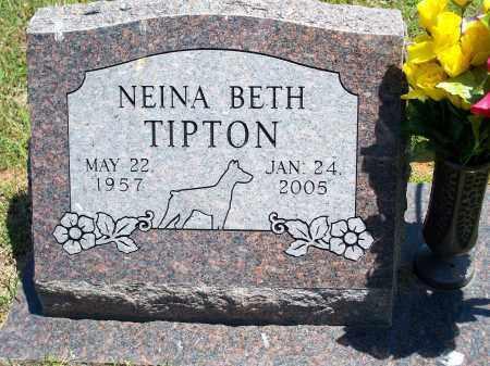 TIPTON, NEINA BETH - Washington County, Arkansas | NEINA BETH TIPTON - Arkansas Gravestone Photos