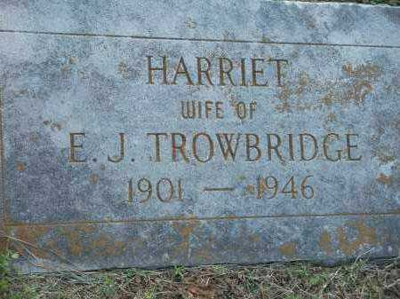 TROWBRIDGE, HARRIET - Washington County, Arkansas | HARRIET TROWBRIDGE - Arkansas Gravestone Photos