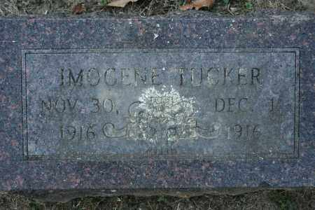 TUCKER, IMOGENE - Washington County, Arkansas | IMOGENE TUCKER - Arkansas Gravestone Photos