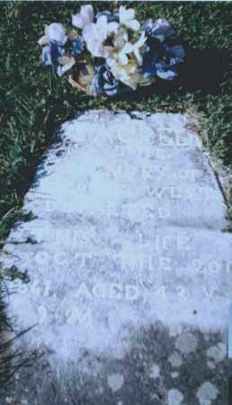 WEST, GEORGE - Washington County, Arkansas   GEORGE WEST - Arkansas Gravestone Photos