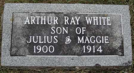 WHITE, ARTHUR RAY - Washington County, Arkansas | ARTHUR RAY WHITE - Arkansas Gravestone Photos