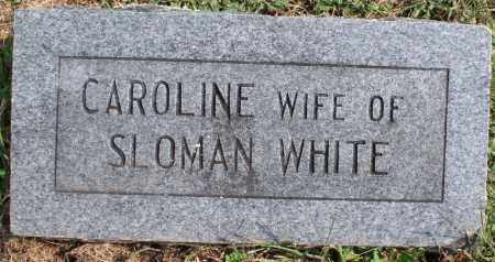 WHITE, CAROLINE - Washington County, Arkansas | CAROLINE WHITE - Arkansas Gravestone Photos