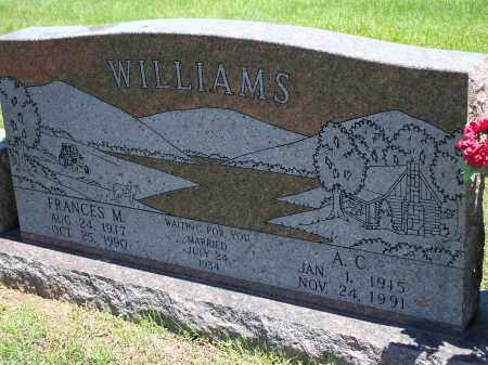 WILLIAMS, FRANCES M. - Washington County, Arkansas | FRANCES M. WILLIAMS - Arkansas Gravestone Photos