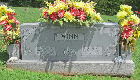 WINN, AUSTIN R - Washington County, Arkansas | AUSTIN R WINN - Arkansas Gravestone Photos
