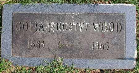 WOOD, GOLIA (SHORTY) - Washington County, Arkansas | GOLIA (SHORTY) WOOD - Arkansas Gravestone Photos