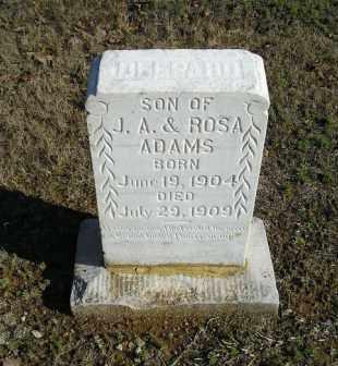 ADAMS, DELPARD - White County, Arkansas | DELPARD ADAMS - Arkansas Gravestone Photos