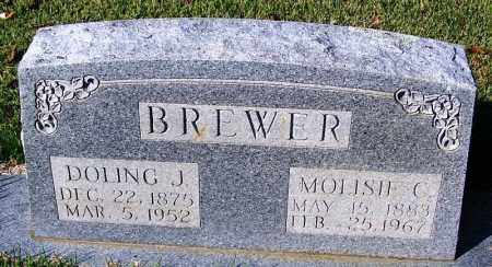 BREWER, DOLING J - White County, Arkansas | DOLING J BREWER - Arkansas Gravestone Photos