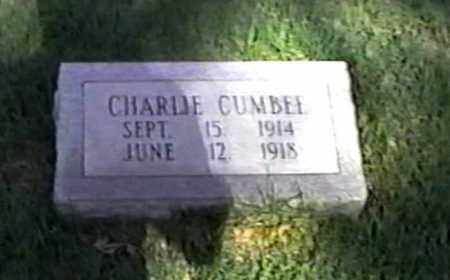 CUMBEE, CHARLIE - White County, Arkansas | CHARLIE CUMBEE - Arkansas Gravestone Photos