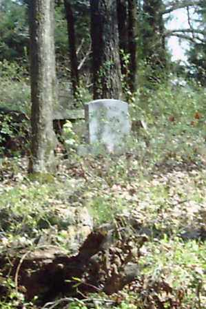 *DUPRIEST CEMETERY OVERVIER (2,  - White County, Arkansas    *DUPRIEST CEMETERY OVERVIER (2 - Arkansas Gravestone Photos