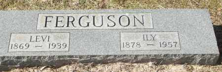 FERGUSON, ILY - White County, Arkansas | ILY FERGUSON - Arkansas Gravestone Photos