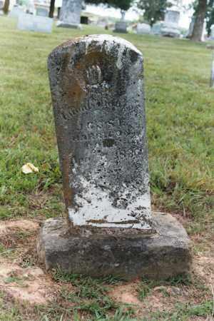 HARRISON, INFANT DAUGHTER - White County, Arkansas | INFANT DAUGHTER HARRISON - Arkansas Gravestone Photos