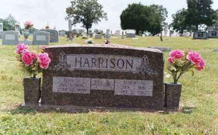 HARRISON, EFFIE ANNIE - White County, Arkansas | EFFIE ANNIE HARRISON - Arkansas Gravestone Photos