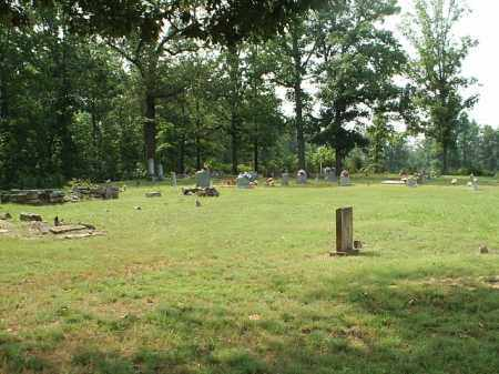 *LEGGETT CEMETERY VIEW,  - White County, Arkansas |  *LEGGETT CEMETERY VIEW - Arkansas Gravestone Photos