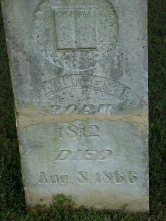 LILES, A - White County, Arkansas | A LILES - Arkansas Gravestone Photos