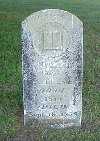 LILES, JANE - White County, Arkansas | JANE LILES - Arkansas Gravestone Photos