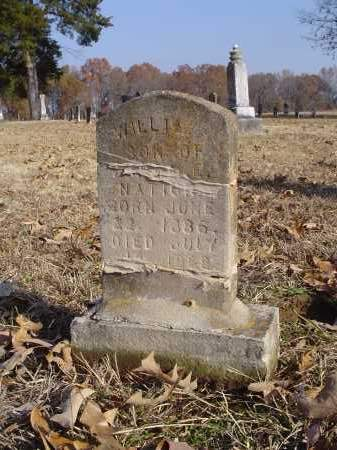 "NATIONS, WILLIAM ""WILLIE"" - White County, Arkansas 