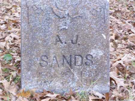 SANDS, A. J. - White County, Arkansas | A. J. SANDS - Arkansas Gravestone Photos