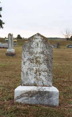 WARD, JOHN FRANK - White County, Arkansas | JOHN FRANK WARD - Arkansas Gravestone Photos