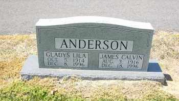 ANDERSON, JAMES  CALVIN - Woodruff County, Arkansas | JAMES  CALVIN ANDERSON - Arkansas Gravestone Photos