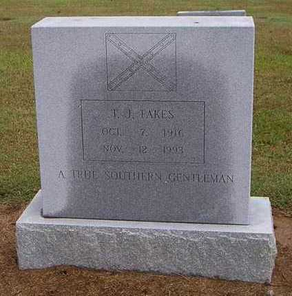 FAKES, T. J. - Woodruff County, Arkansas | T. J. FAKES - Arkansas Gravestone Photos