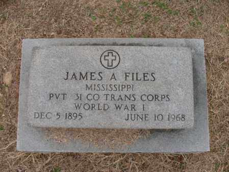 FILES (VETERAN WWI), JAMES A - Woodruff County, Arkansas | JAMES A FILES (VETERAN WWI) - Arkansas Gravestone Photos