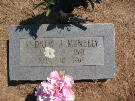 MCNEELY, ANDREW J - Woodruff County, Arkansas | ANDREW J MCNEELY - Arkansas Gravestone Photos