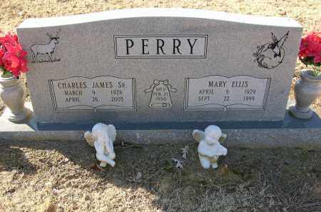 PERRY, MARY ELLIS - Woodruff County, Arkansas | MARY ELLIS PERRY - Arkansas Gravestone Photos