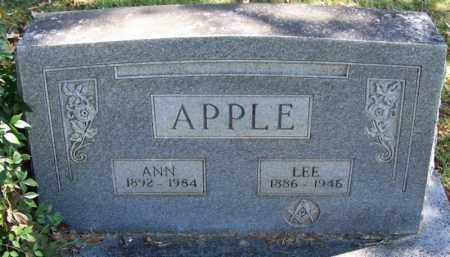APPLE, ANN - Yell County, Arkansas | ANN APPLE - Arkansas Gravestone Photos