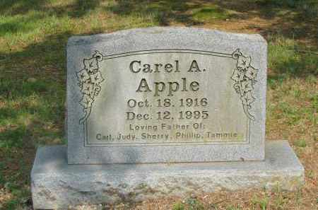 APPLE, CAREL A - Yell County, Arkansas | CAREL A APPLE - Arkansas Gravestone Photos