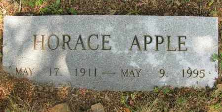 APPLE, HORACE - Yell County, Arkansas | HORACE APPLE - Arkansas Gravestone Photos