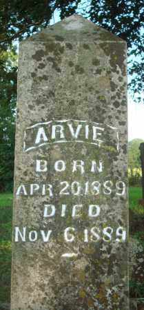 BARNES, ARVIE - Yell County, Arkansas | ARVIE BARNES - Arkansas Gravestone Photos