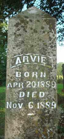 BARNES, ARVIE - Yell County, Arkansas | ARVIE BARNES - Arkansas Gravestone Photos