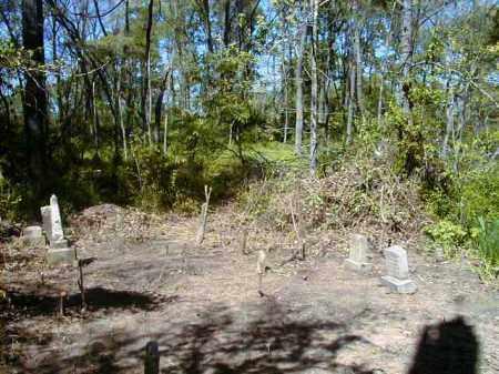 *BATA MILL CEMETERY VIEW 2,  - Yell County, Arkansas |  *BATA MILL CEMETERY VIEW 2 - Arkansas Gravestone Photos