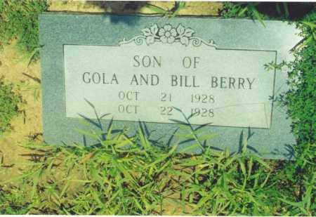 BERRY, SON OF GOLA AND BILL - Yell County, Arkansas | SON OF GOLA AND BILL BERRY - Arkansas Gravestone Photos